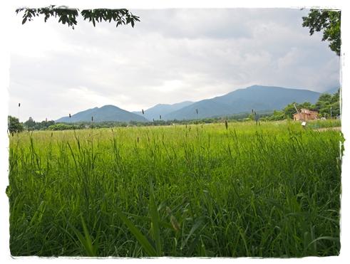 安曇野自然農の旅