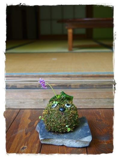 鎌倉のレイキ体験会